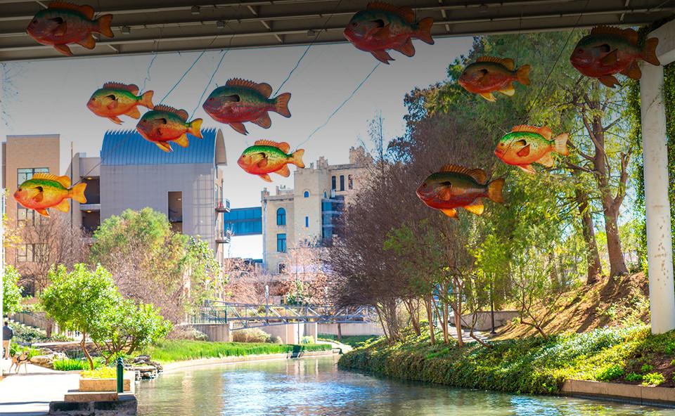 bg_bridge-fish